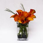 Apricot Summer Floral Arrangement