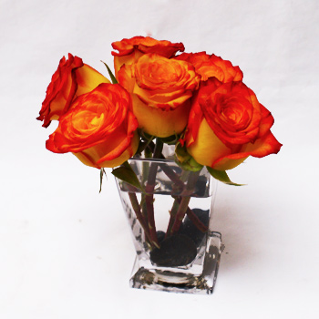 Orange Kisses Floral Arrangement