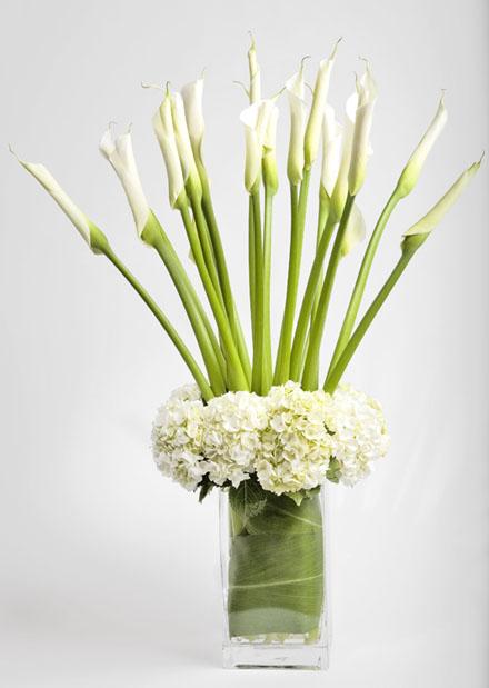 Tall White On White Modern Flower 299 San Francisco