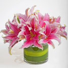 Simply Lily Floral Arrangement