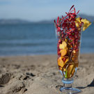 Sex on the Beach Floral Arrangement